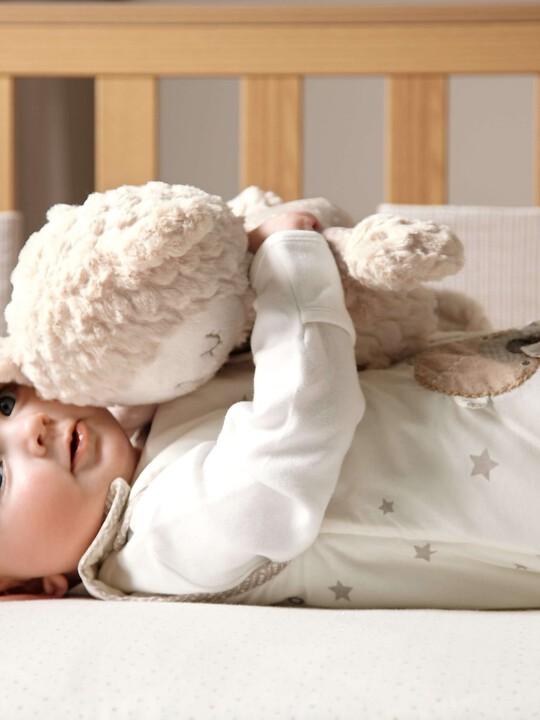 الدُب النائم - مضيء image number 8